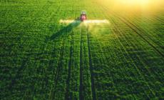Ministrul Agriculturii: România nu va intra în criză de alimente