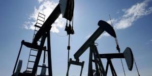 OPEC vrea să reducă producția de petrol pentru a menține prețul