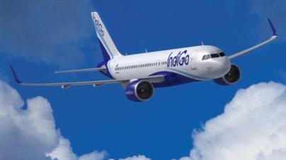 Confirmarea inevitabilului: Airbus a livrat de peste două ori mai multe avioane decât Boeing