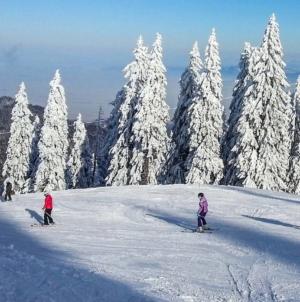 62% dintre români îşi vor petrece vacanţa de iarnă în țară. Iată principalele destinații