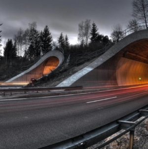 Se reia licitația pentru cel mai lung tunel de autostradă din România