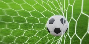 După Dinamo, și FC Botoșani trebuie să amâne meciurile din Liga 1 din cauza infecțiilor cu coronavirus