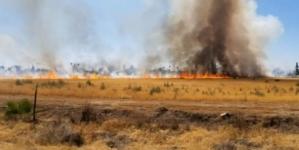 Poluare cu fum în București și Ilfov. Ministrul Mediului atrage atenția supra incendiilor de vegetație