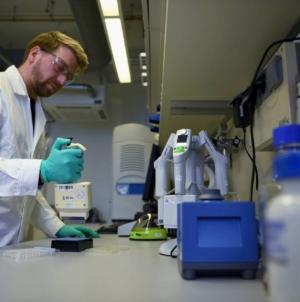 Sute români de la o companie germană, infectați sau suspecți de coronavirus