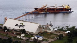Ecologia împinsă la extrem: revenim la navele cu vele