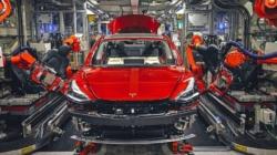 Tesla invită europenii să-i viziteze viitoarea fabrică din Germania