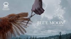 Pelicula românească Blue Moon, cel mai bun film la Festivalul de la San Sebastian